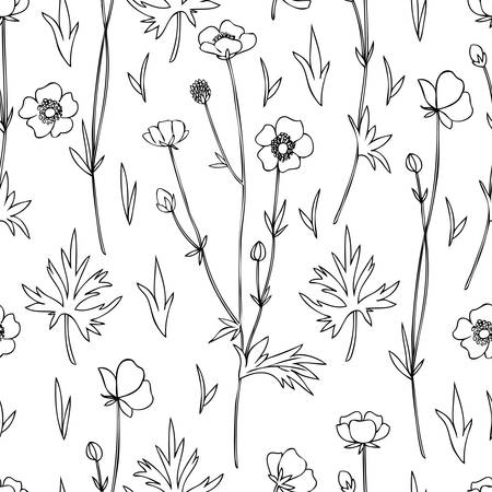 Seamless floral pattern Buttercup flower or Crowfoot vector illustration isolated on white background, decorative herbal outline texture, ink backdrop for design medicine, wedding invitation, cosmetic