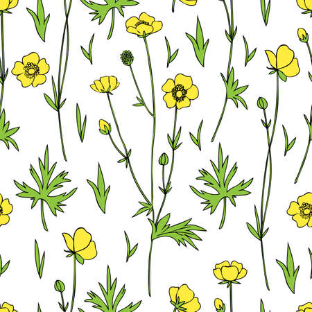 Seamless floral pattern Buttercup flower or Crowfoot vector illustration isolated on white background, decorative herbal colorful texture, backdrop for design medicine, wedding invitation, cosmetics