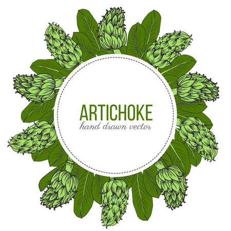 Artichoke hand drawn vector sketch isolated on white background, graphic herbal decorative plant round frame, Organic food ingredient colorful illustration, for design healthy market, menu, cosmetic