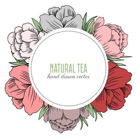 Trollius asiaticus flowers, Globeflower or Kupavna, Round frame, bouquet vector isolated on white background, Ranunculus or Kupavka decorative label for package, medicine, wedding invitation, cosmetic