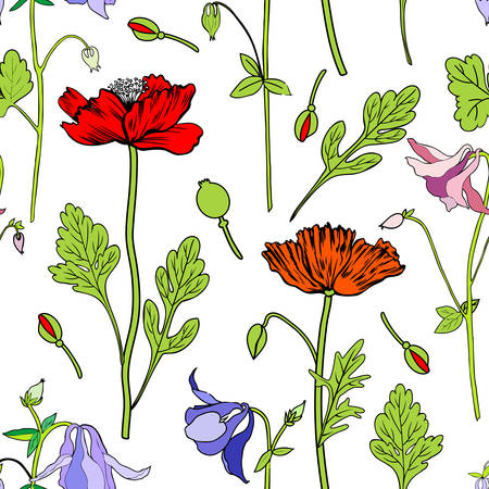 Aquilegia flower, red Poppy, leaf hand drawn vector botanical illustration isolated on white background, Seamless floral pattern, Columbine for design, greeting card, wedding invitation, cosmetics Ilustrace
