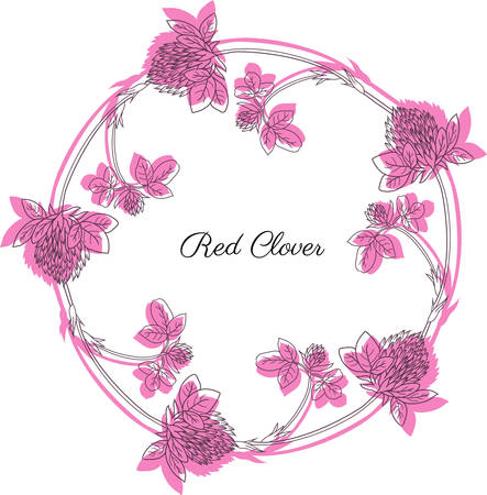 Red clover, blossom shamrock wild field flower hand drawn vector sketch isolated on white background, Round frame, graphic floral wreath for cosmetic, design package tea, greeting card, wedding invite