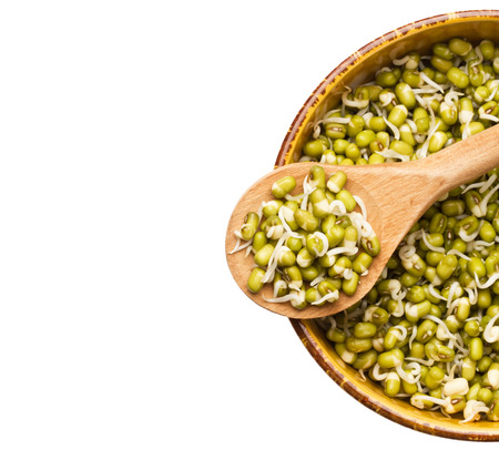 Mung beans sprouts in wooden spoon and bowl with mung beans sprouts isolated on white Stock Photo - 27024719