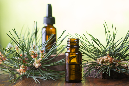 Pine essential oil and pine twigs