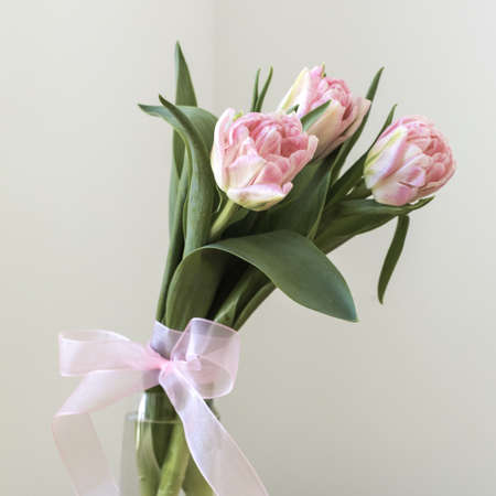Bouquet Of Tulips In A Glass Vase With A Pink Bow Stock Photo
