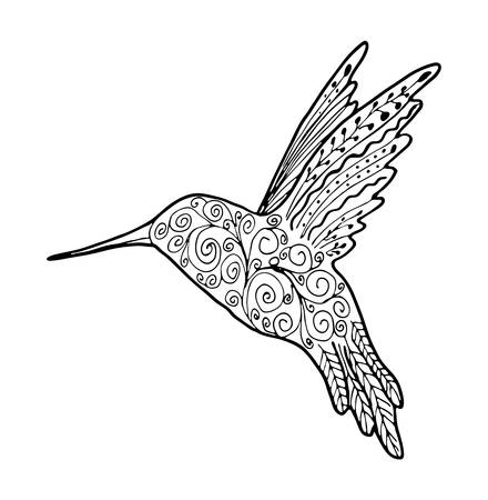 Hand drawing outline birds for design. style hummingbird vector illustration isolated on white background. Vector Illustratie