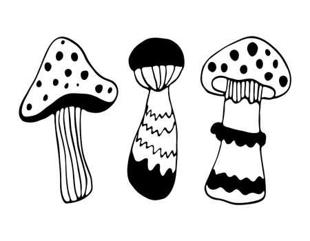 Vector black outline food illustration. Hand drawing mushroom doodles set.
