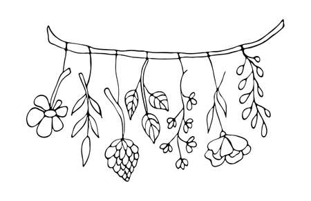Witchcraft black outline doodle on white background. Hand drawn dried flowers vector illustration. Ilustracja