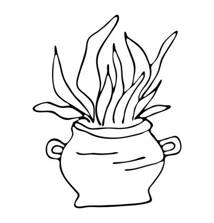 Boiling magic cauldron with plants vector illustration. Hand drawn wiccan design, astrology, alchemy, magic symbol or halloween design.