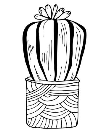 Black outline cactus with flowers in modern pot isolated on white background. Vector hand drawn botanical illustration.