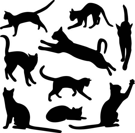 silhouettes: vector collection of cat silhouettes Illustration