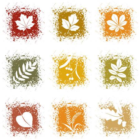 autumn leaf frame: Conjunto de iconos de hojas de oto�o