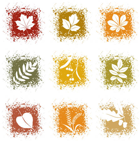 Set autumn leaves icons Stock Vector - 7633527