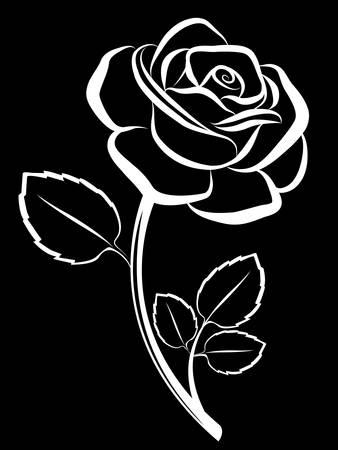 rose art black backdrop Stock Vector - 7802293
