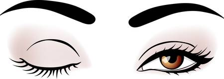 eyebrow makeup: Vector occhi di donna  Vettoriali