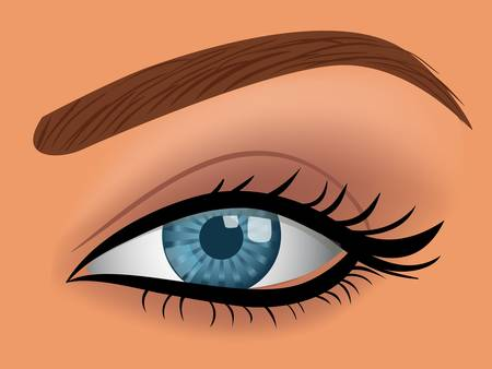 eyebrow makeup: occhio di donna blu vettoriale