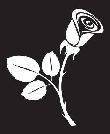 rose: vector rose art illustration Illustration