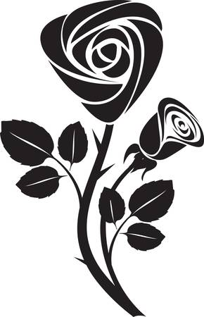 schwarze rosen: Vector rose Kunst illustration Illustration