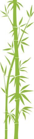 feuille de bambou: Bambou