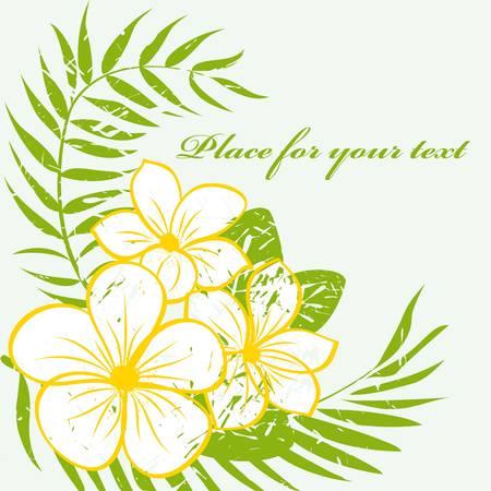 hawaii flower: tropical flower background