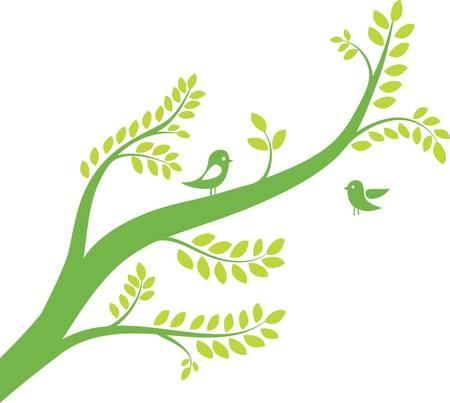 uccelli su ramo: albero di primavera con gli uccelli. Illustrazione vettoriale