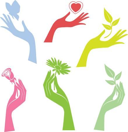 hold hand: Illustrata la mano presentando un vettore di fiore colorato