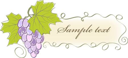 vintage banner with grapes and leaves. Vector illustration Stock Vector - 9605800