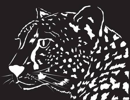 Portrait of a leopard. Design element. Vector