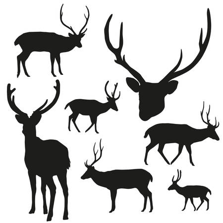 large group of objects: silhouette deer on white background. Vector illustration. Illustration