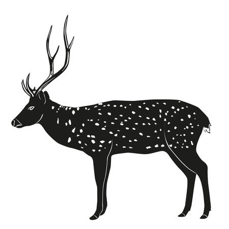 wildlife: hand drawn deer. Wildlife sketch clipart