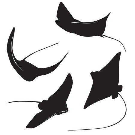 Set of stingray silhouette and icons in simple style. Vektorové ilustrace