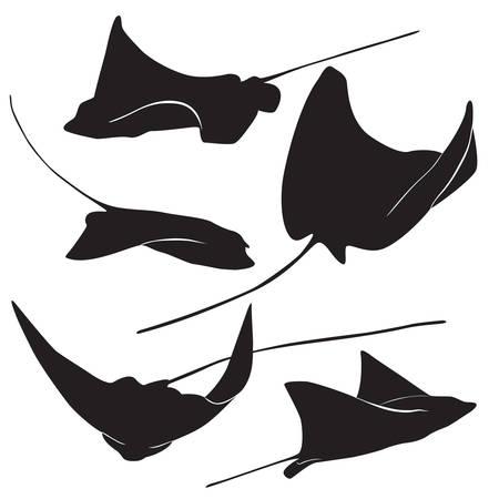 Conjunto de la silueta de raya y los iconos de forma sencilla. ilustración vectorial.