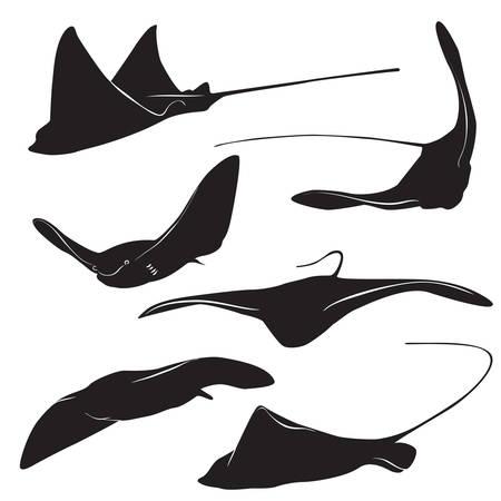 Ensemble de silhouette galuchat et des icônes dans un style simple. illustration vectorielle.