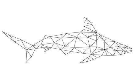 多角形の幾何学的低ポリ ベクトル サメ ベクトル図