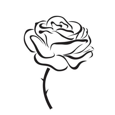 rosa del icono del vector