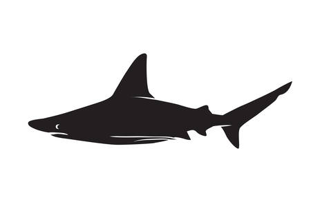 animal silhouette: Shark vector silhouettes icon.