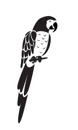 Parrot icon isolated on white background. Vector Ilustração