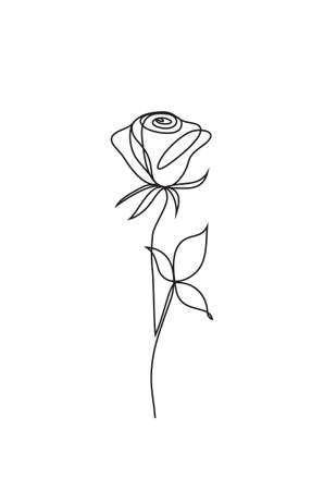 rose one line art. Flower icon Stock Photo