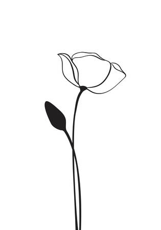 Poppy flower line art. contour drawing. One line artwork