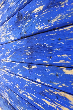 Bright blue exfoliated wood texture photo