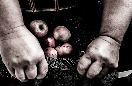 decomposed: Hands holding rotten apples in lap