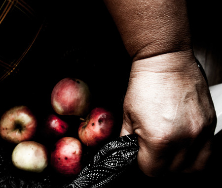 Hands holding rotten apples in lap  photo