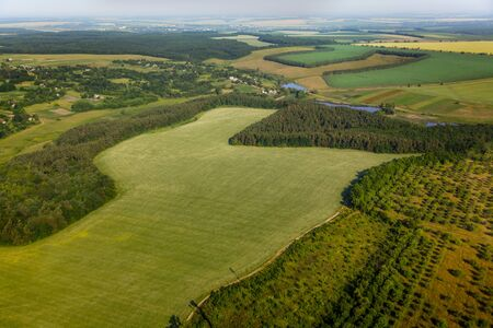 aerial animal: aerial view above the green fields