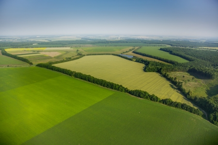 aerial view above the green fields photo