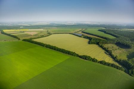 cenital: vista a�rea sobre los campos verdes Foto de archivo