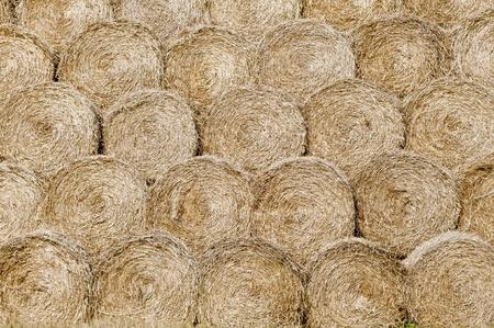 haymow: heap of haystacks Stock Photo
