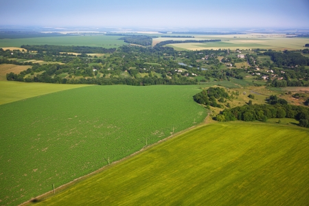 top of the world: Aerial view of colza fields near the village