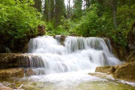 Montanian 森の滝