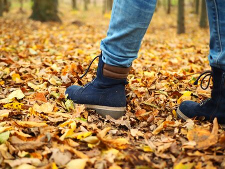 Parque de otoño una niña caminando entre otoño amarillo-hojas naranjas