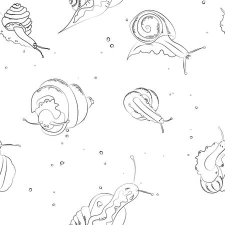 Seamless vector pattern snails and shells.Texture with snails on white background. Illustration